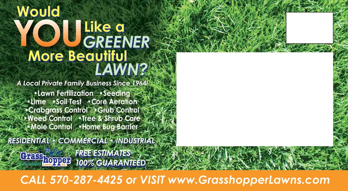 Grasshopper Lawns Post Card by Rooster Creative Back