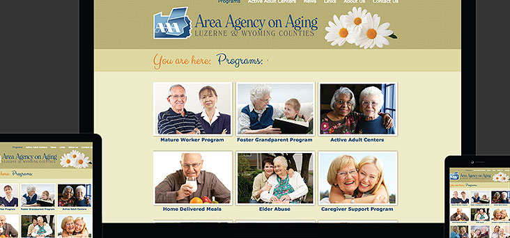 Area Agency on Aging Website by Rooster Creative Thumbnail