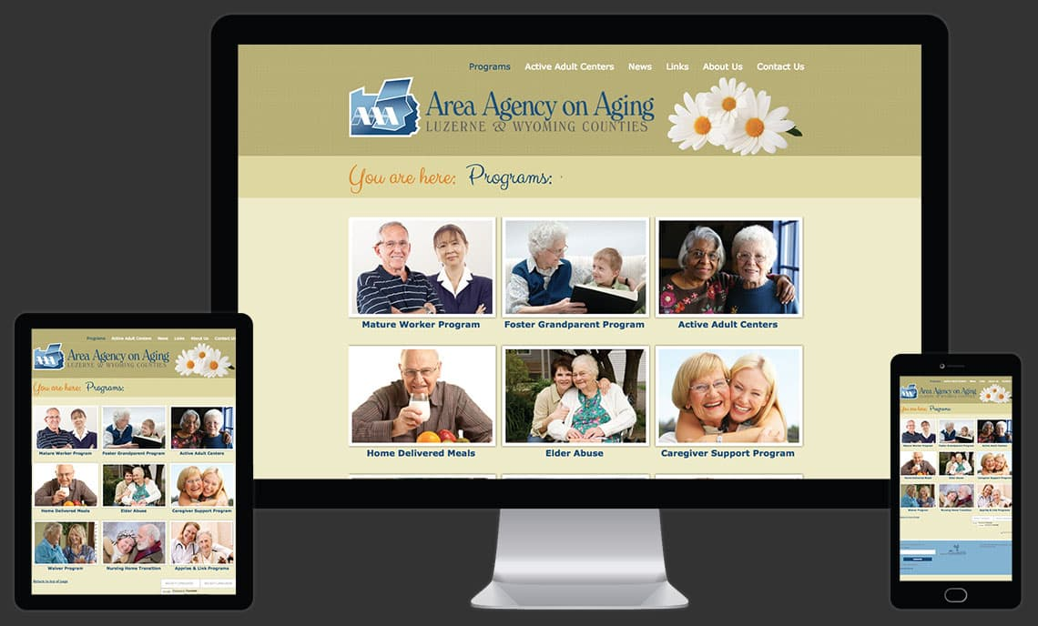 Area Agency on Aging Website by Rooster Creative Views