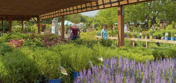 Edward's Garden Center Inspiration TV Spot Thumbnail